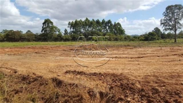 Terreno à venda em Costa do ipiranga, Gravataí cod:1013 - Foto 16