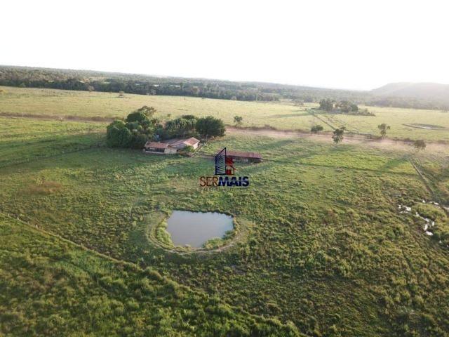 Fazenda à venda, 105 alqueires por R$ 2.625,000 - Alta Floresta D'Oeste/RO - Foto 5