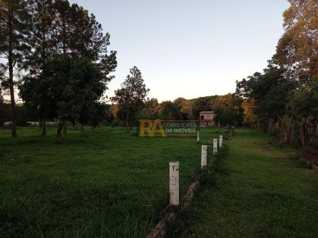 Chácara com 2 dormitórios à venda, 10000 m² por R$ 750.000,00 - Loteamento Porto Dourado - - Foto 17