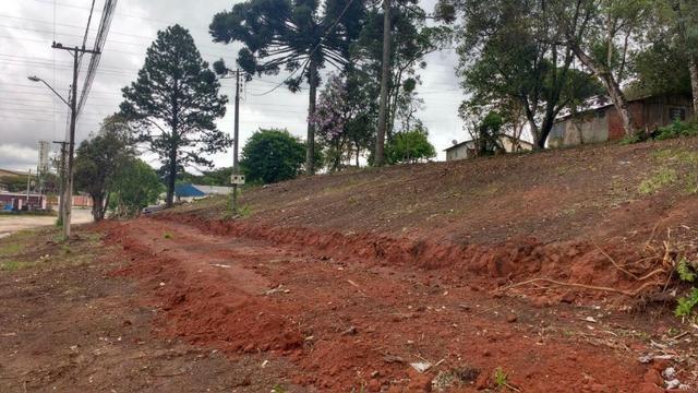 Terreno para Barracões e Oficas Ótima Localização CIC/ BR 277 - Foto 4