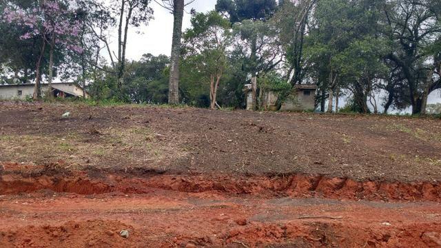 Terreno para Barracões e Oficas Ótima Localização CIC/ BR 277 - Foto 2