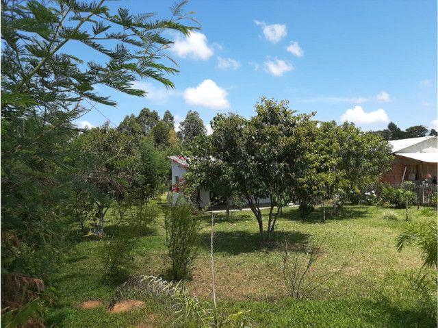 Velleda oferece sítio 1100 m², casa nova alvenaria, 1 km da RS-040 - Foto 9