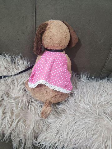 cachorro pelúcia com coleira