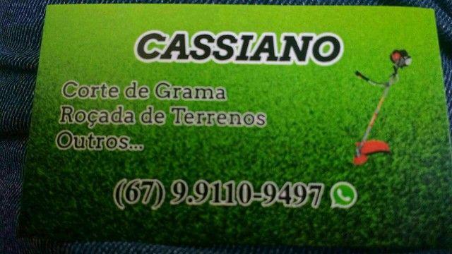 Corte de grama a partir de 50 reais.