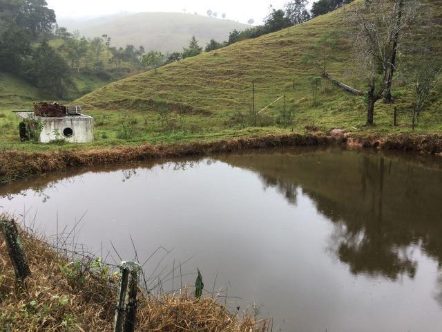 Fazenda com 300 mil m² - Foto 11