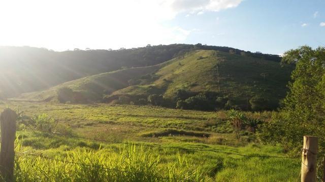 Sitio Taubaté 2,48 Alqs.ótima topografia só terra á 3 km da Rodovia Osvaldo cruz - Leia - Foto 3