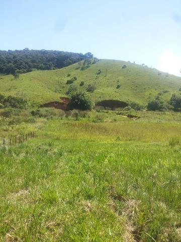 Sitio Taubaté 2,48 Alqs.ótima topografia só terra á 3 km da Rodovia Osvaldo cruz - Leia - Foto 8