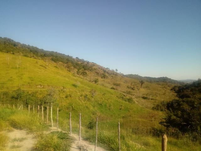Fazenda 97 Alqs Na Região do Vale do Paraíba SP Negocio de oportunidade - Leia o anúncio - Foto 6