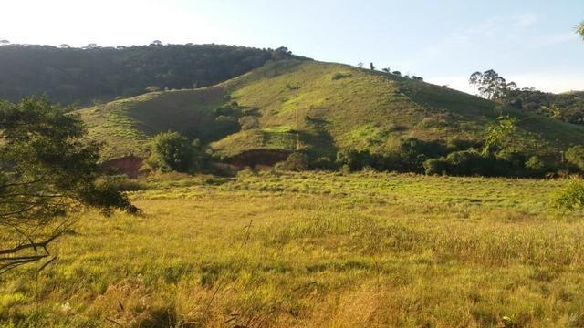 Sitio Taubaté 2,48 Alqs.ótima topografia só terra á 3 km da Rodovia Osvaldo cruz - Leia - Foto 4