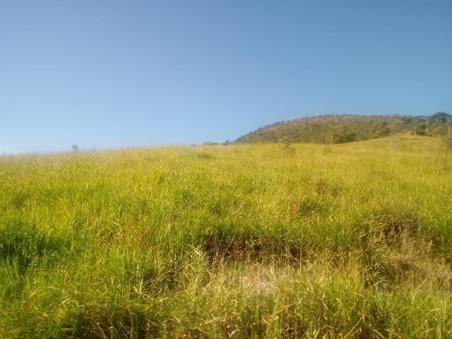Fazenda 97 Alqs Na Região do Vale do Paraíba SP Negocio de oportunidade - Leia o anúncio - Foto 10