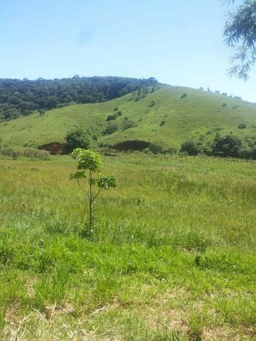 Sitio Taubaté 2,48 Alqs.ótima topografia só terra á 3 km da Rodovia Osvaldo cruz - Leia - Foto 6