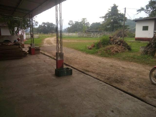 Linda fazenda em Cachoeiras de Macacu 20 alqueires oportunidade!!!! - Foto 15