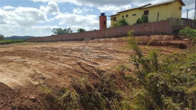 Terreno à venda em Costa do ipiranga, Gravataí cod:1013 - Foto 15