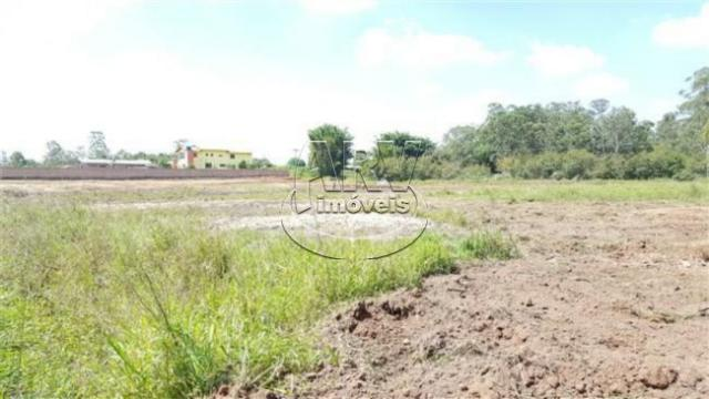 Terreno à venda em Costa do ipiranga, Gravataí cod:1013 - Foto 18