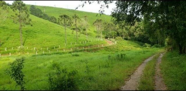 Fazenda em Campo Magro 60 Alqueires - Foto 2