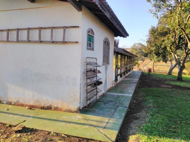 8271 | Fazenda à venda em ZONA RURAL, Cascavel - Foto 9