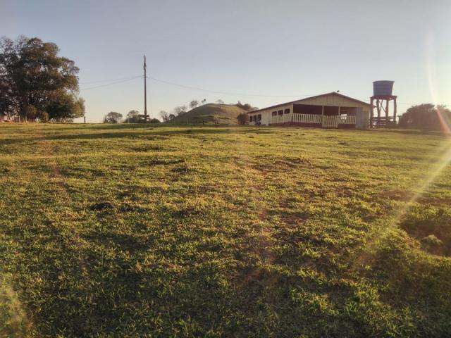 8271 | Fazenda à venda em ZONA RURAL, Cascavel - Foto 6