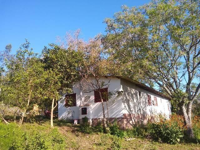 Bela chacrinha, 5km de santo antônio 1km asfalto, casa, açude, galpão, fogão campeiro - Foto 3