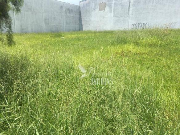 Terreno para alugar, 369 m² por R$ 2.000/mês - Portal de Versalhes 1 - Londrina/PR - Foto 2