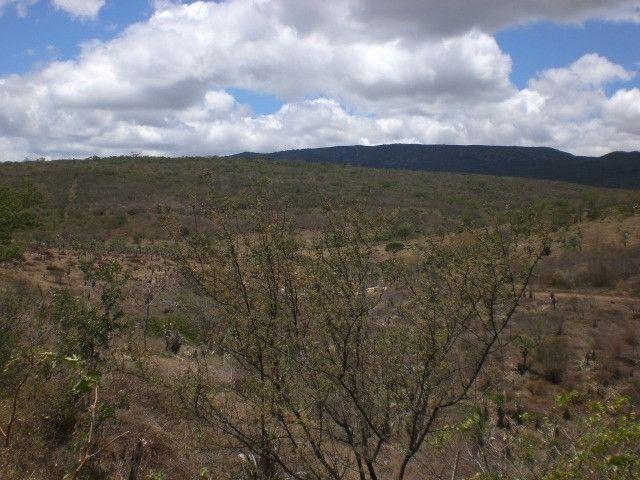 Área de garimpo de esmeralda com 10 hectares localizada no garimpo de Socotó-Bahia - Foto 2