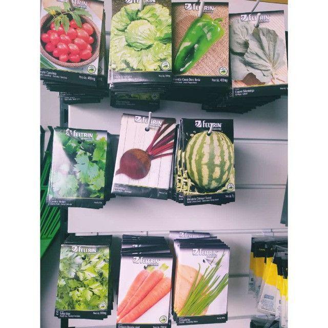 10 pacotes de sementes a sua escolha!!!