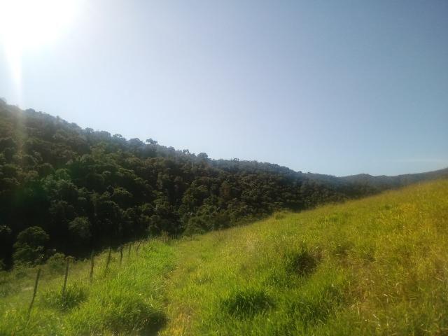 Fazenda 97 Alqs Na Região do Vale do Paraíba SP Negocio de oportunidade - Leia o anúncio - Foto 7