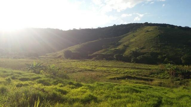 Sitio Taubaté 2,48 Alqs.ótima topografia só terra á 3 km da Rodovia Osvaldo cruz - Leia - Foto 2