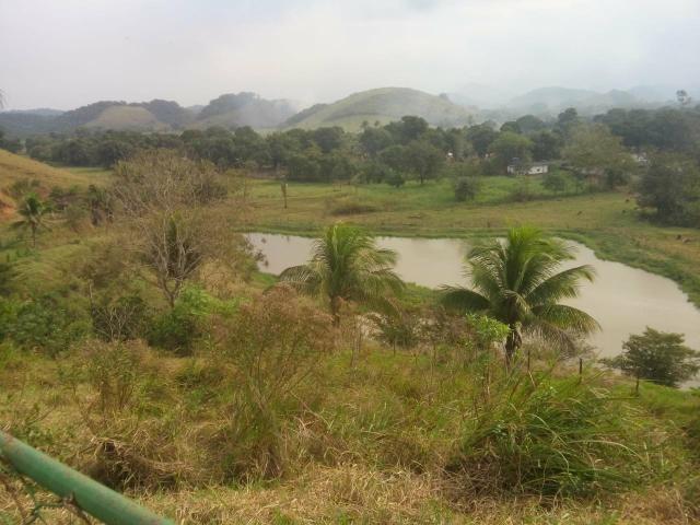 Linda fazenda em Cachoeiras de Macacu 20 alqueires oportunidade!!!! - Foto 8