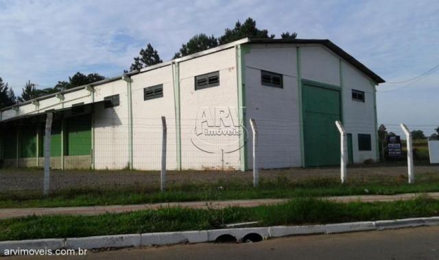 Galpão/depósito/armazém para alugar em Águas mortas, Gravataí cod:1582