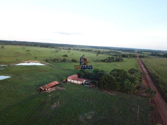 Fazenda à venda, 105 alqueires por R$ 2.625,000 - Alta Floresta D'Oeste/RO