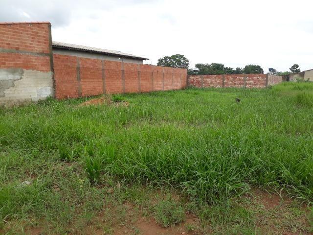 Terreno medindo 10 x 30 todo murado - Foto 3