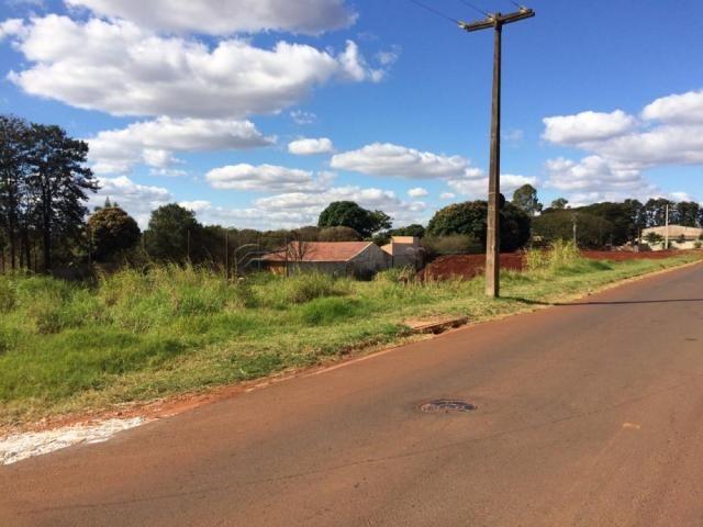 Terreno à venda em Conj vivi xavier, Londrina cod:V1363 - Foto 5