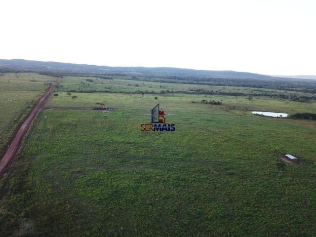 Fazenda à venda, 105 alqueires por R$ 2.625,000 - Alta Floresta D'Oeste/RO - Foto 3