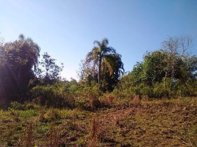 Bela chacrinha, 5km de santo antônio 1km asfalto, casa, açude, galpão, fogão campeiro - Foto 9
