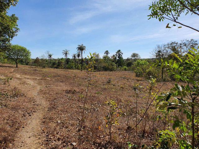 Faz 585 Alq planta os taiao 50 % até 300 Alq vale do Araguaia - Foto 3