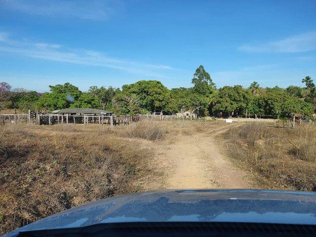 Faz 585 Alq planta os taiao 50 % até 300 Alq vale do Araguaia - Foto 4