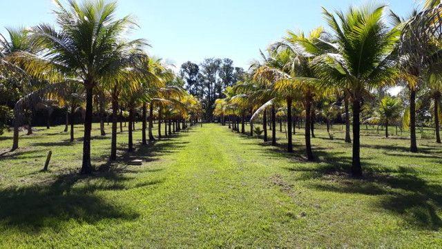 Rancho as margens do rio Sucuriú