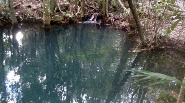 Chácara com área de 4000m², 14 km de Alto Paraíso de Goiás - Foto 4