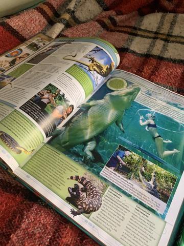 Livro guinness book - Foto 4