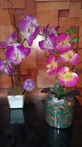 Orquídeas de mesa- Preço da unidade