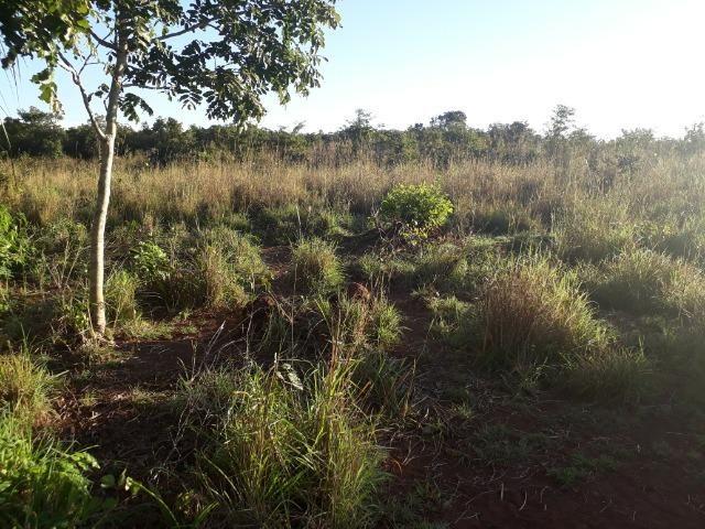 Chácara muito boa a 9 km de Acorizal - Foto 19