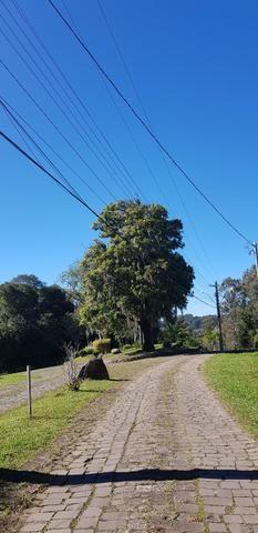 Terreno em Condomínio Fechado Monte Berico / Caxias do Sul - Foto 4