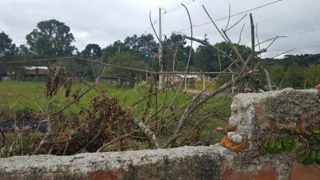 Chácara/bem localizada, de frente para Rodovia BR277 só R$3.499.000,00 - Foto 8