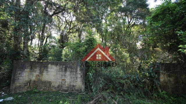 Terreno à venda, 1066 m² por r$ 530.000,00 - cidade industrial - curitiba/pr - Foto 4