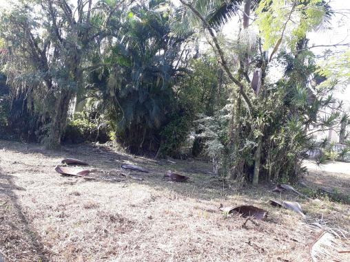 Terreno à venda em Bucarein, Joinville cod:18210 - Foto 3
