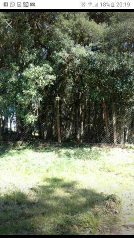 Chácara jardim das hortencias - Foto 18