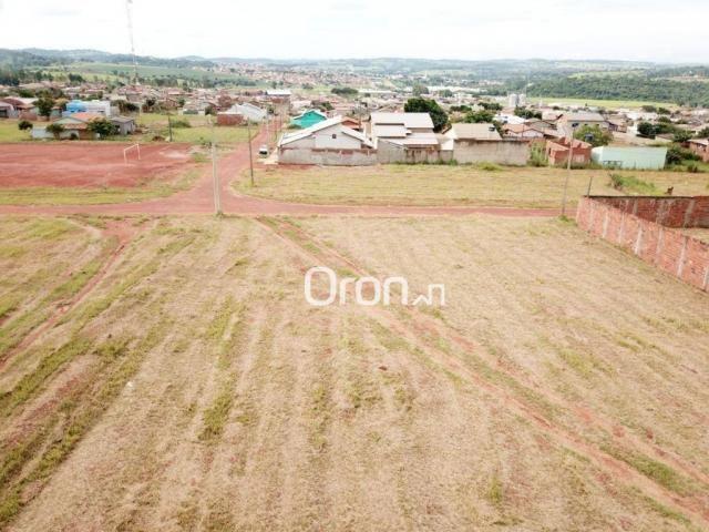 Terreno à venda, 738 m² por R$ 100.000,00 - Residencial Nova Cidade - Nerópolis/GO - Foto 4