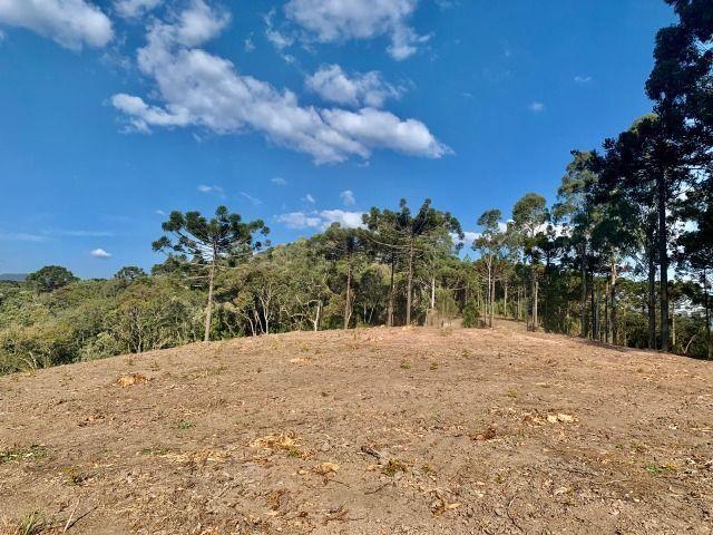 Chácara em Urubici/ terreno em Urubici/ Urubici - Foto 11