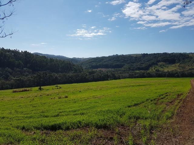 8345 | Sítio à venda em Rural, Santa Maria - Foto 9
