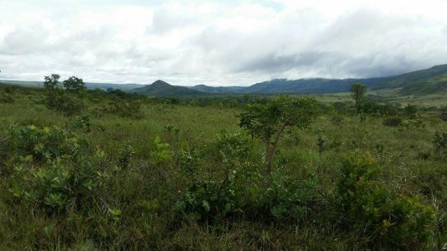 Chácara com área de 4000m², 14 km de Alto Paraíso de Goiás - Foto 7